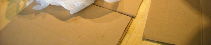 Use card board or thick brown paper bags as plates and placemats.